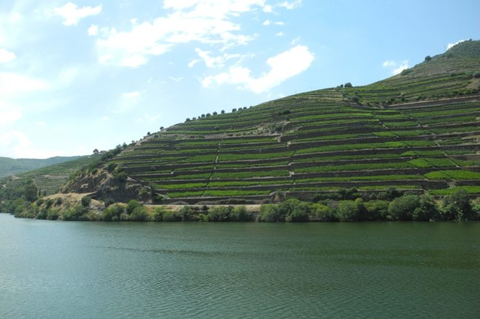 Douro Grand Tour – An authentic experience